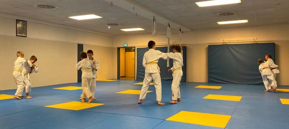 Judo Restart bei der DJK Ingolstadt
